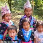 hmongcolours